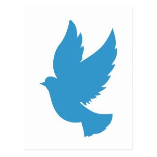 Pájaro azul que vuela postal