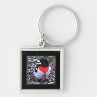 Pájaro cantante grueso rojo del pico de Breasted Llavero