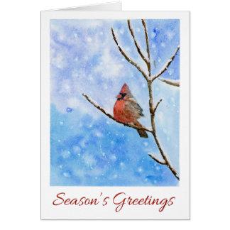 Pájaro cardinal rojo en una tarjeta Nevado