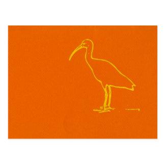 Pájaro de agua postal