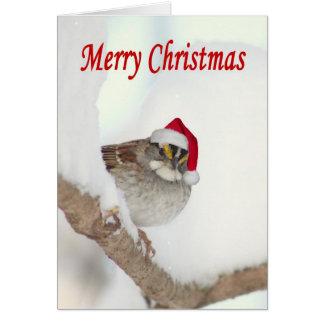 Pájaro de las Felices Navidad con la tarjeta de