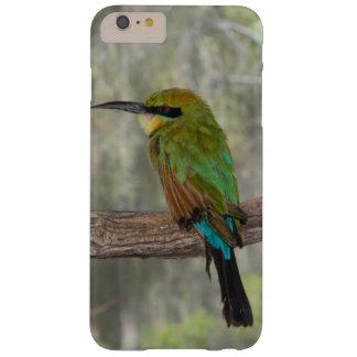 Pájaro del abeja-comedor del arco iris, Australia Funda Barely There iPhone 6 Plus