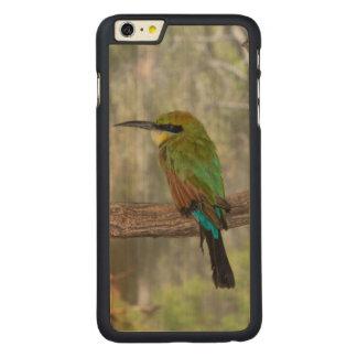 Pájaro del abeja-comedor del arco iris, Australia Funda Fina De Arce Para iPhone 6 Plus De Carved