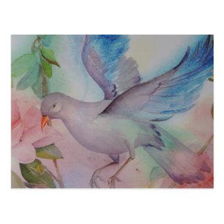 Pájaro del amor en azul y rosa postal