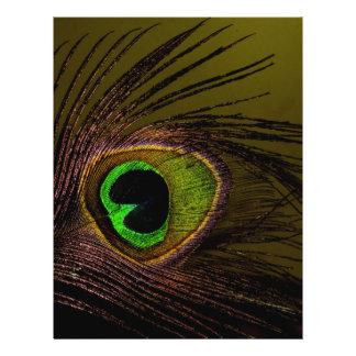 Pájaro del pavo real del Peafowl Folleto 21,6 X 28 Cm