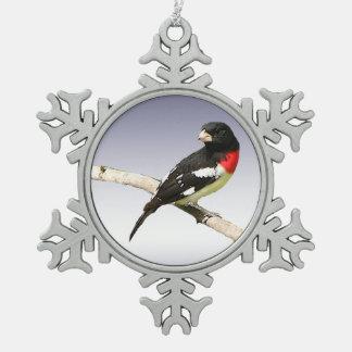 Pájaro del Rosa-Breasted