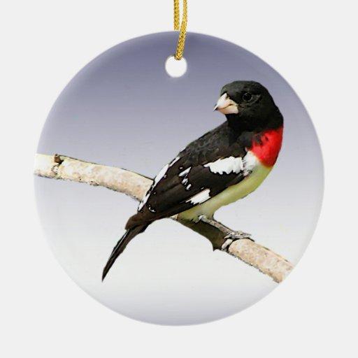 Pájaro del Rosa-breasted Adornos