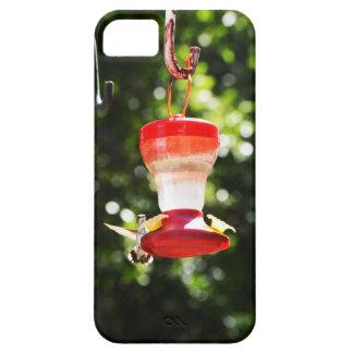 Pájaro del tarareo funda para iPhone SE/5/5s