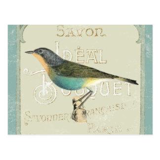 Pájaro del vintage que hace frente a la izquierda tarjeta postal