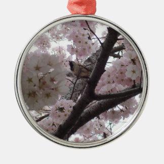 Pájaro en el ornamento del cerezo ornamentos de reyes