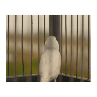 Pájaro en jaula impresión en madera