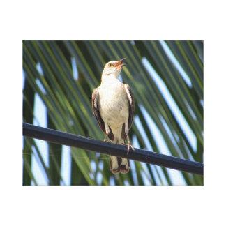 Pájaro en un alambre impresión en lienzo