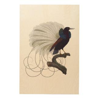 Pájaro exótico tropical impresión en madera
