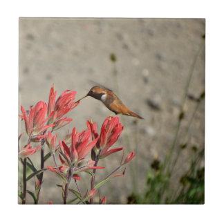 Pájaro rojo de la flor azulejo cuadrado pequeño