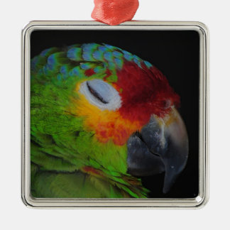 Pájaro rojo de Lored el Amazonas que guiña el Adorno Navideño Cuadrado De Metal