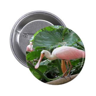 Pájaro rosado del Spoonbill rosado Pin