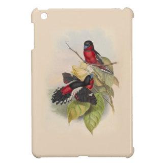 Pájaros 002 del vintage