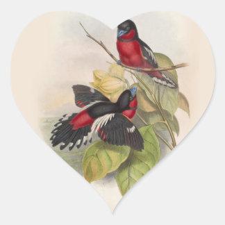 Pájaros 002 del vintage pegatina en forma de corazón