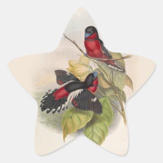 Pájaros 002 del vintage pegatina en forma de estrella