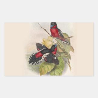 Pájaros 002 del vintage pegatina rectangular