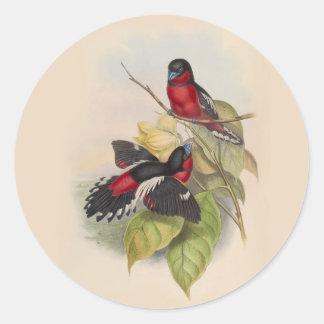 Pájaros 002 del vintage pegatina redonda