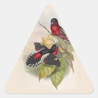 Pájaros 002 del vintage pegatina triangular