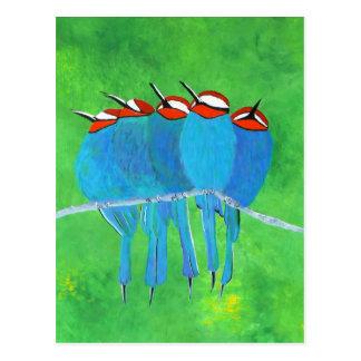 Pájaros azules tarjetas postales