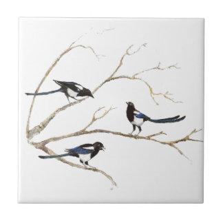 Pájaros de la familia de la urraca de la acuarela azulejo cuadrado pequeño