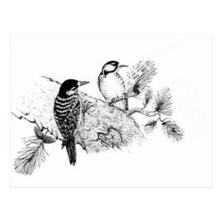 Pájaros del amor del vintage que casan la postal