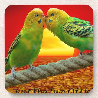 Pájaros del amor posavasos para bebidas