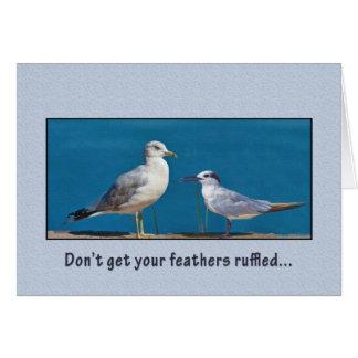 Pájaros del cumpleaños del humor de la gaviota y tarjetas