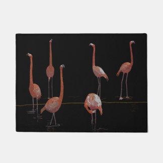 Pájaros del flamenco