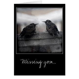 Pájaros en la falta de usted tarjeta de