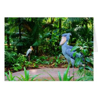Pájaros en la tarjeta de felicitación del parque