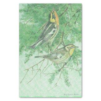 Pájaros en papel seda de las ramas del árbol