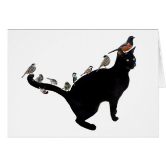 Pájaros en tarjeta del gato
