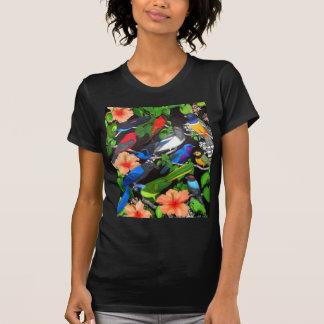 Pájaros tropicales de la camiseta menuda de México