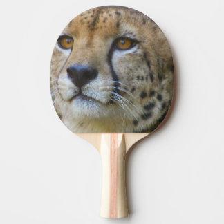 Pala De Ping Pong cheetah-21.jpg