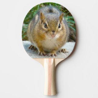 Pala De Ping Pong El Chipmunk lindo tiene su ojo en usted