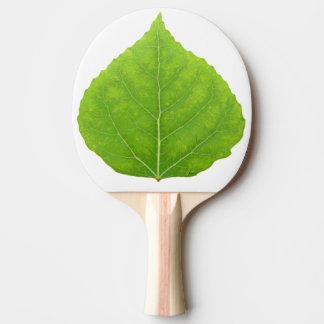 Pala De Ping Pong Hoja verde #11 de Aspen