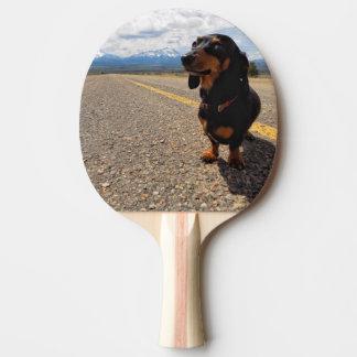 Pala De Ping Pong La Veta Colorado