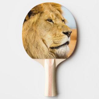 Pala De Ping Pong León grande que mira lejos