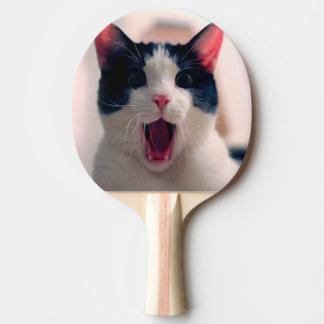 Pala De Ping Pong Meme del gato - gato divertido - memes divertidos