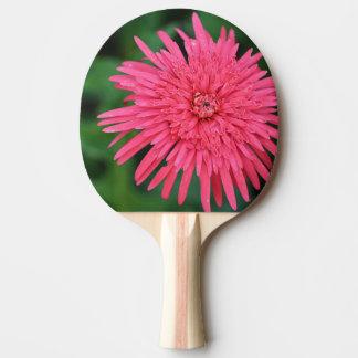 Pala De Ping Pong Paleta coralina magnífica del ping-pong de la flor