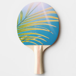 Pala De Ping Pong Paleta soleada del ping-pong de la palmera de la