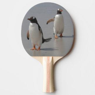 Pala De Ping Pong peguin