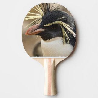 Pala De Ping Pong penguin-86.jpg