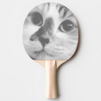 Pala De Ping Pong Retrato LINDO ESTUPENDO del gato del gatito