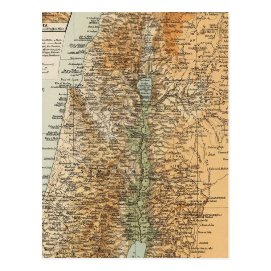 Palestina 3 postal