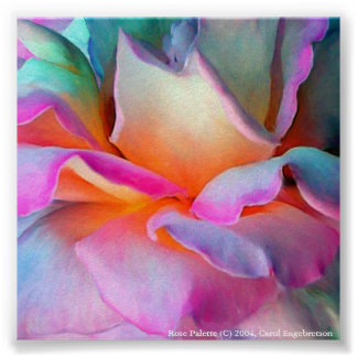 Paleta color de rosa póster